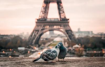 Französisch: Die Sprache der Liebe