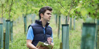 Auslandsjobs im Bereich der Land- und Forstwirtschaft