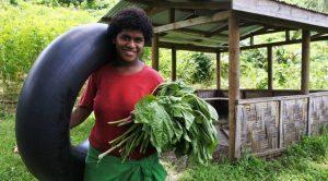 Freiwilligenarbeit auf Fidschi