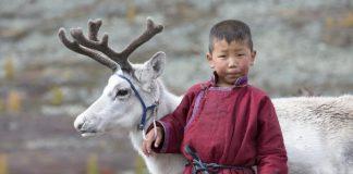 Freiwilligenarbeit in der Mongolei