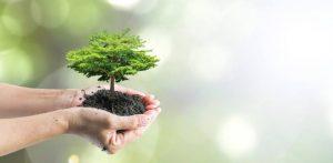 Freiwilligenarbeit im Bereich Tiere und Umwelt