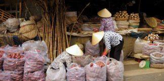 Praktika in Vietnam