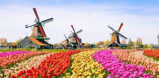 Sprachreisen in den Niederlanden