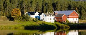 Meine Erfahrungen mit Farmarbeit in Norwegen